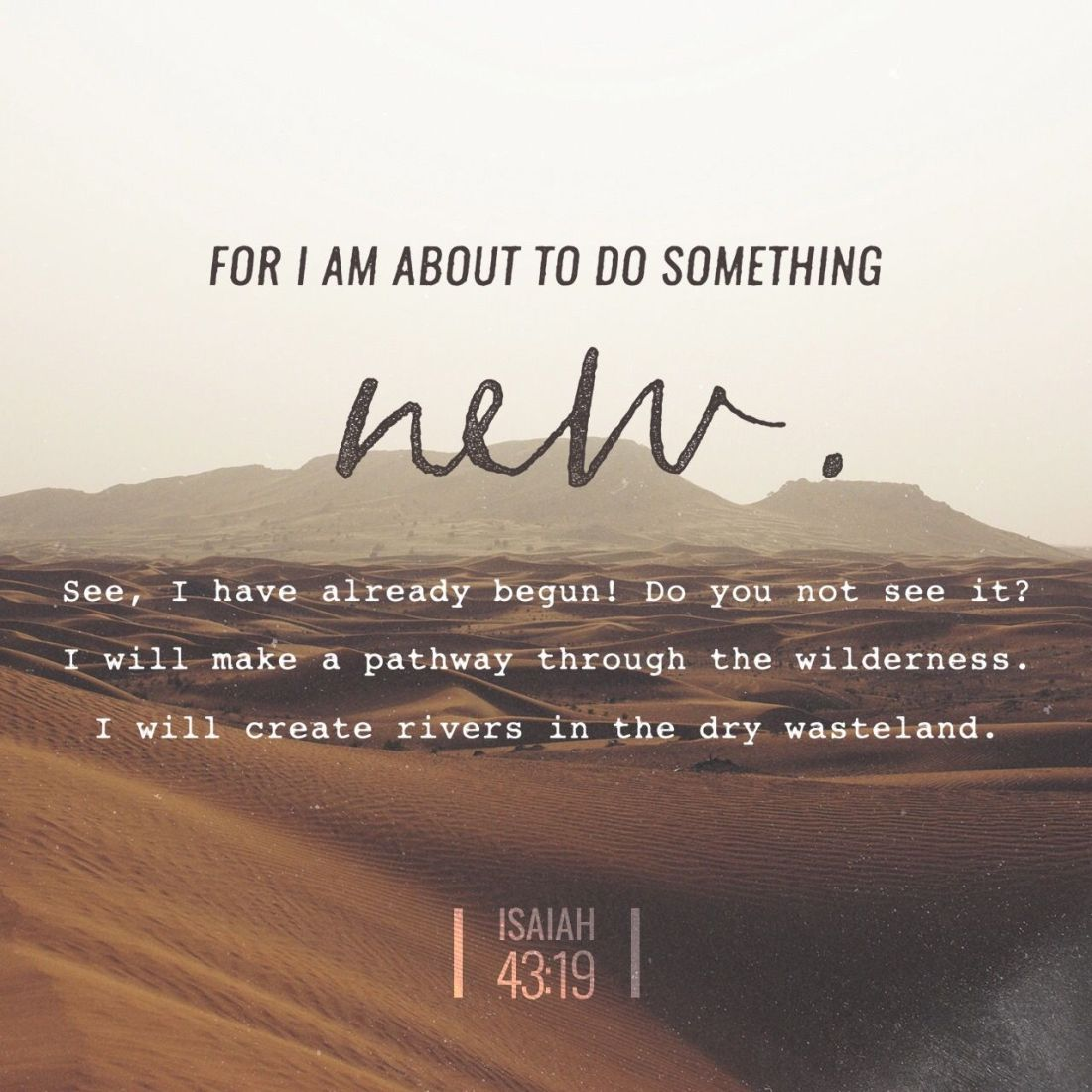 psalm 43 19.jpg